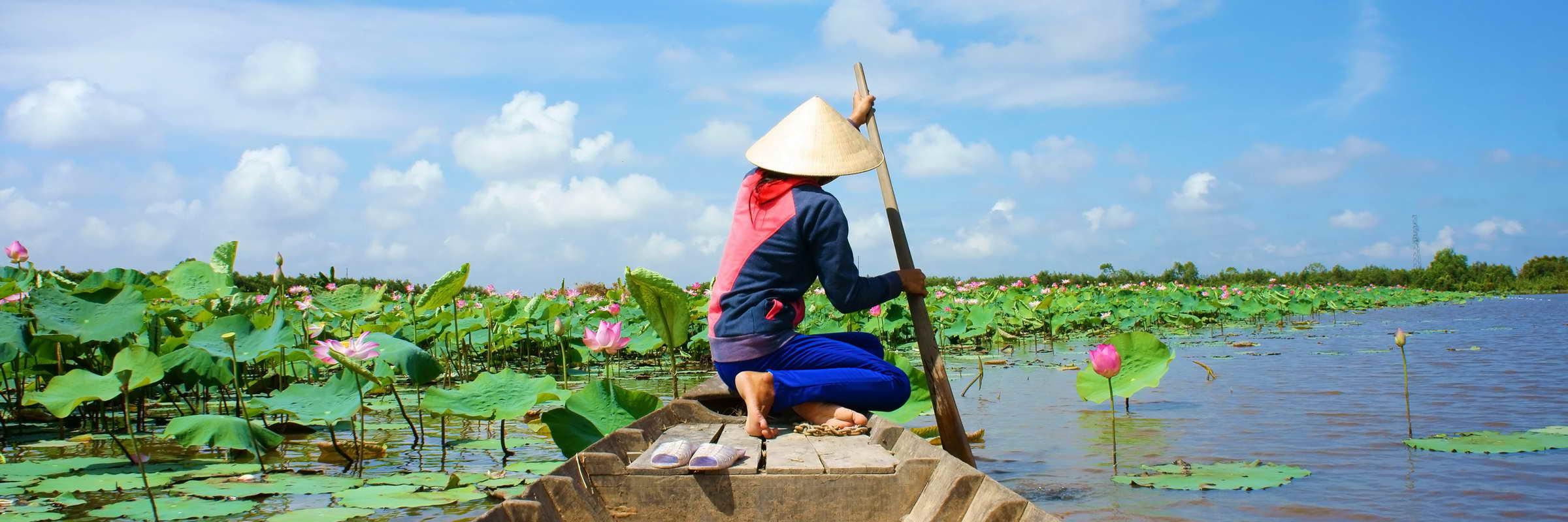 Vietnamesische Frauen fahren mit dem Boot in das Mekong Delta und pflücken Lotusblüten