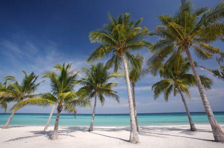 Traumstrand auf der Philippinen-Insel Bohol