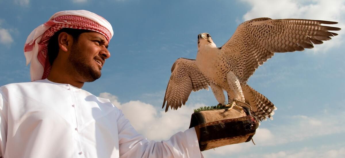 In den Emiraten gelten Falken als Lieblinge der Scheichs und sind auch auf dem Emblem der Vereinigten Arabischen Emirate zu finden.