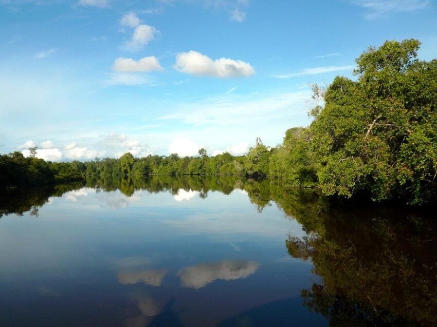 Kalimantan Landschaft