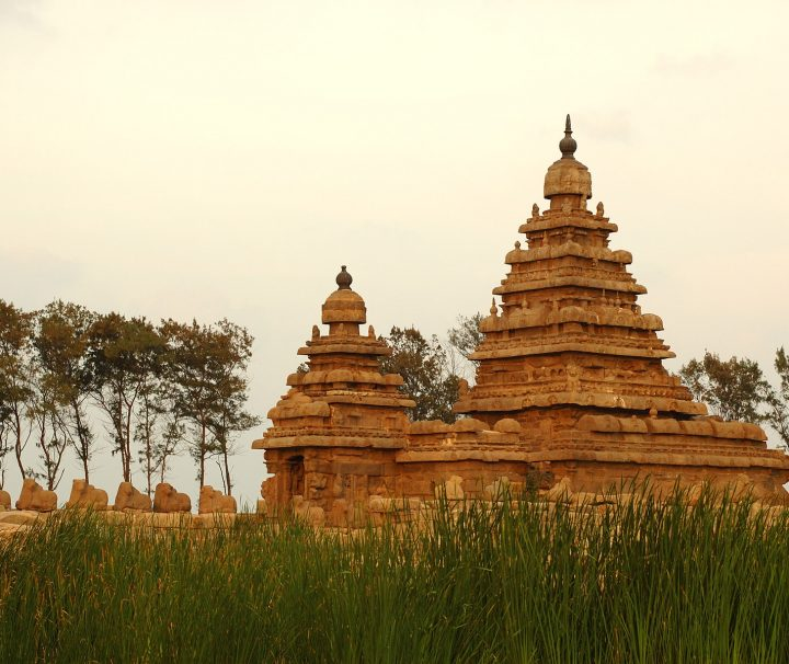 Mahabalipuram ist berühmt für seine sieben pagodenartigen Küstentempel. Der Tempelbezirk ist eine von vielen UNESCO Weltkulturerbestätten in Indien.