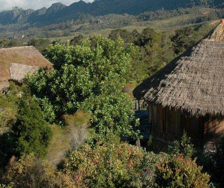 Das Baliem Valley Resort liegt in etwa 1.900 m Höhe in der Mitte der gewaltigen Jayawijaya-Berge, West Papau Irian Jaya.