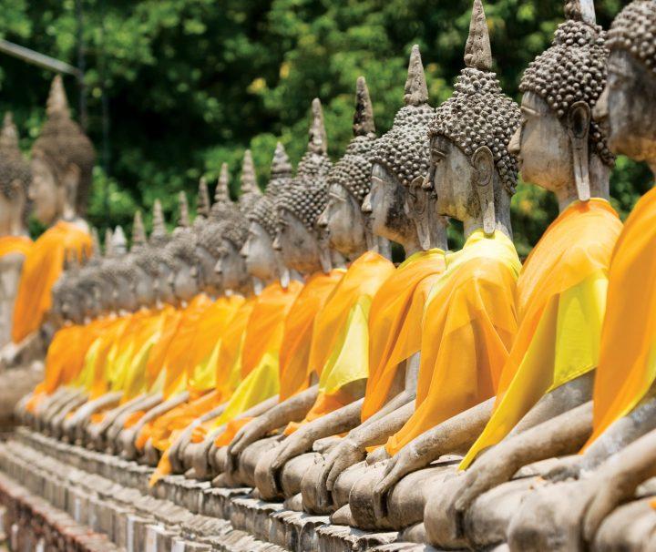 Entlang der Einfassungsmauer im Garten des Wat Yai Chai Mongkon in Ayutthaya sind zahlreiche Buddha-Statuen aufgereiht.