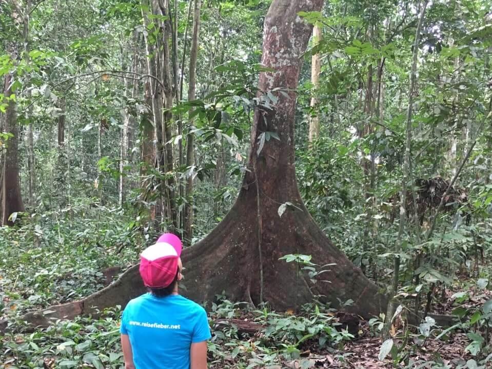 Unsere Reiseexperten unterwegs in Kalimantan