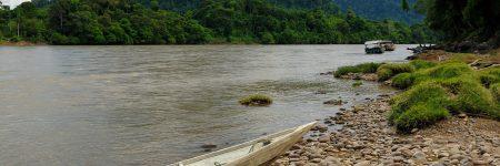 Per Boot auf dem Mahakam River kann man tief in den Regenwald von Kalimantan mit seiner faszinierenden Flora und Fauna vordringen.