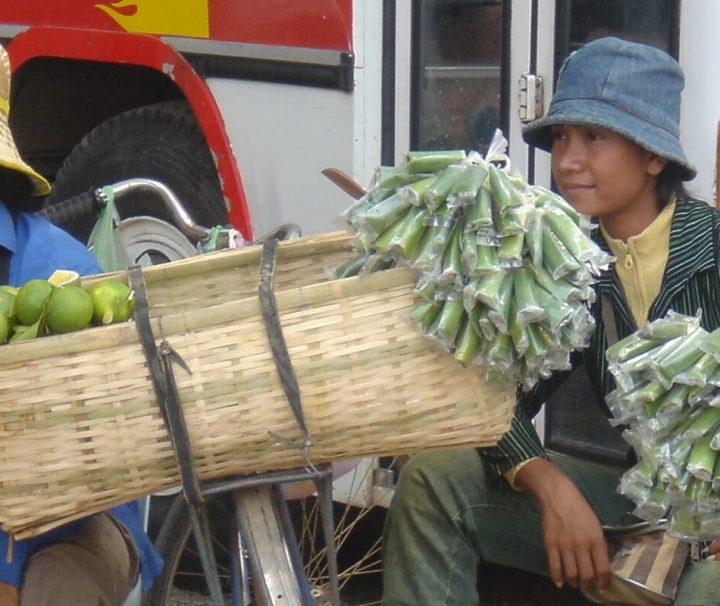 Zwei Frauen verkaufen auf einem Markt in Battambang frisches Obst und Gemüse.