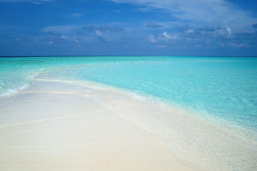 In den seichteren Gewässern des Indischen Ozeans, treten bei niedrigem Wasserstand oft Sandbänke zu tage.