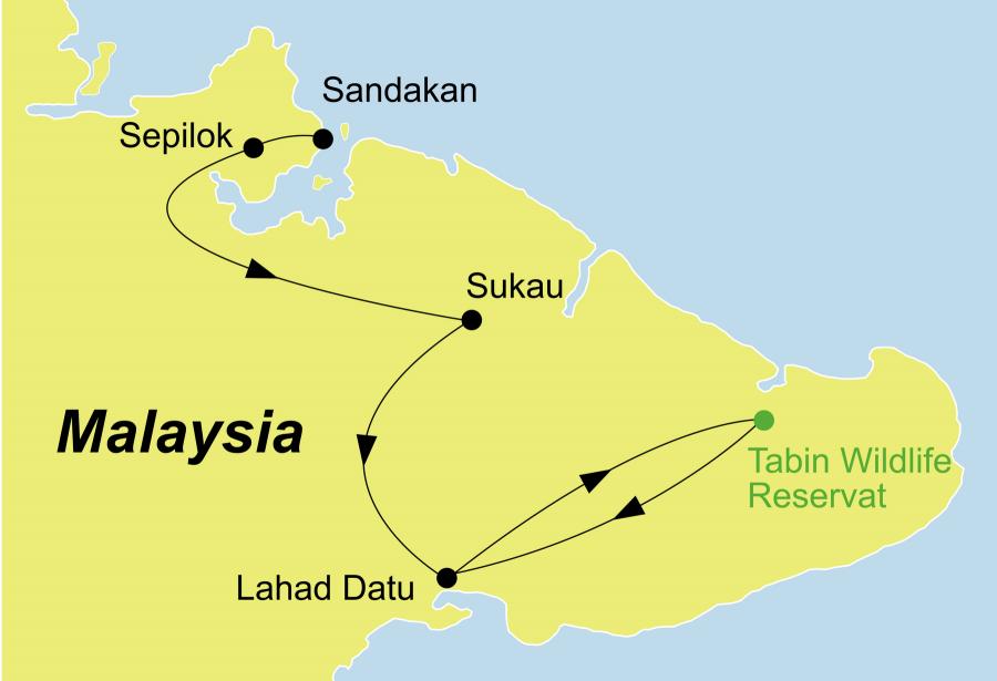Die Borneo Rundreise führt von Sandakan über das Sepilok Orang Utan Rehabilitationszentrum, die Abai Jungle Lodge, Sukau, die Kinabatangan Riverside Lodge und das Tabin Wildlife Reservat nach Lahad Datu.