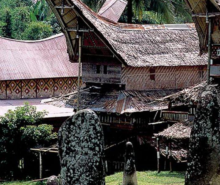 Die traditionellen Ahnenhäuser der Toraja mit ihrer markanten Architektur werden Tongkonan genannt.