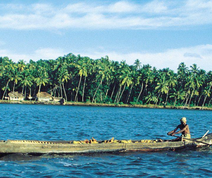 Das Lagunensystem der Backwaters in Kerala in Indien umfasst eine Fläche von 3200 Quadratkilometern.
