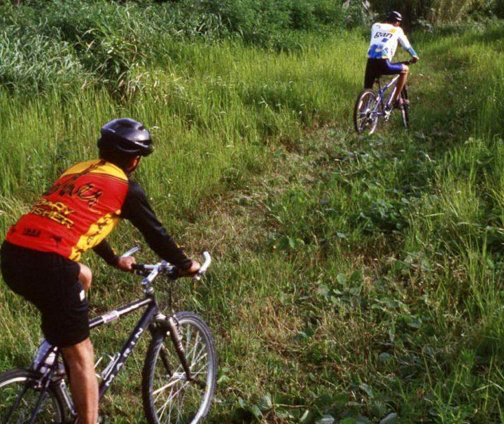 Der zum UNESCO-Weltkulturerbe gehörende Khao Yai Nationalpark eignet sich hervorragend für ausgedehnte Fahrradtouren.