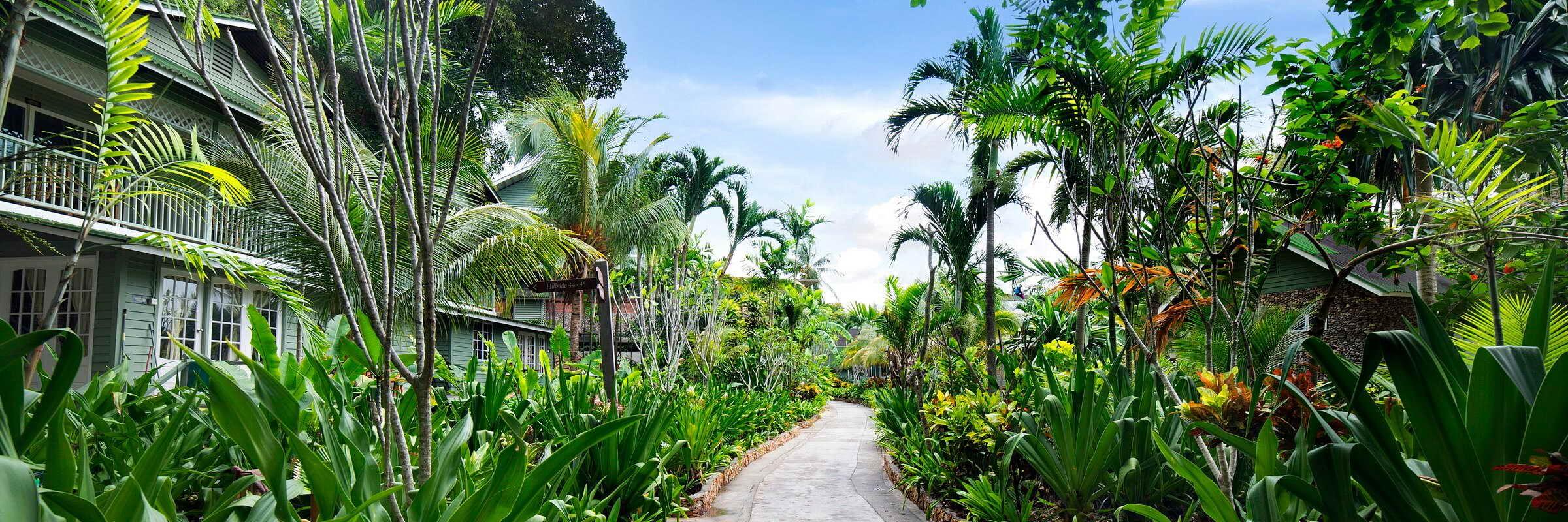 Die gemütlichen Bungalows im Rawa Island Resort fügen sich harmonisch in die Dschungelumgebung der Insel ein.