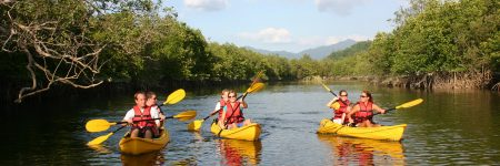 Kayakfahrten gehören zu den beliebtesten Aktivitäten im Khao Sok Nationalpark.