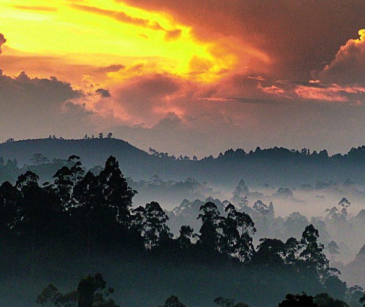 Das atemberaubende Hochland von Sri Lanka bietet die perfekte Kulisse für einen unvergesslichen Sonnenaufgang.
