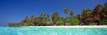 Das spektakuläre Hausriff des Filitheyo Island Resorts ist beidseitig betauchbar und auch für Schnorchler gut geeignet.
