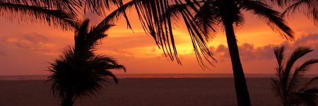 Sonnenuntergang an der Küste von SriLanka