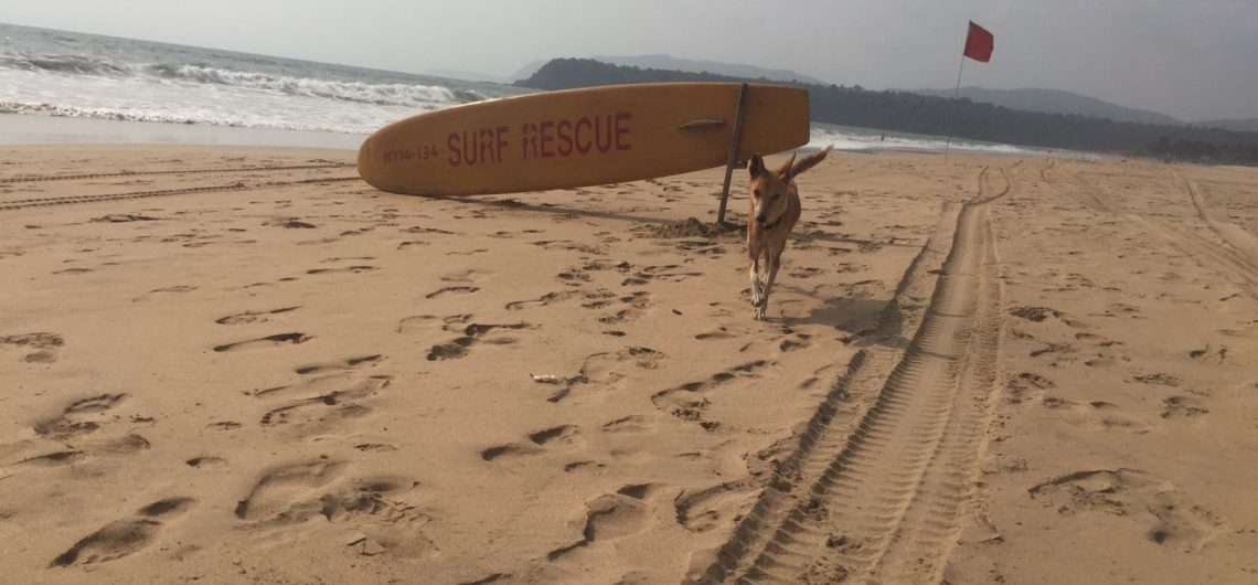 Surfenstrand in Goa mit professioneller Surf Rescue
