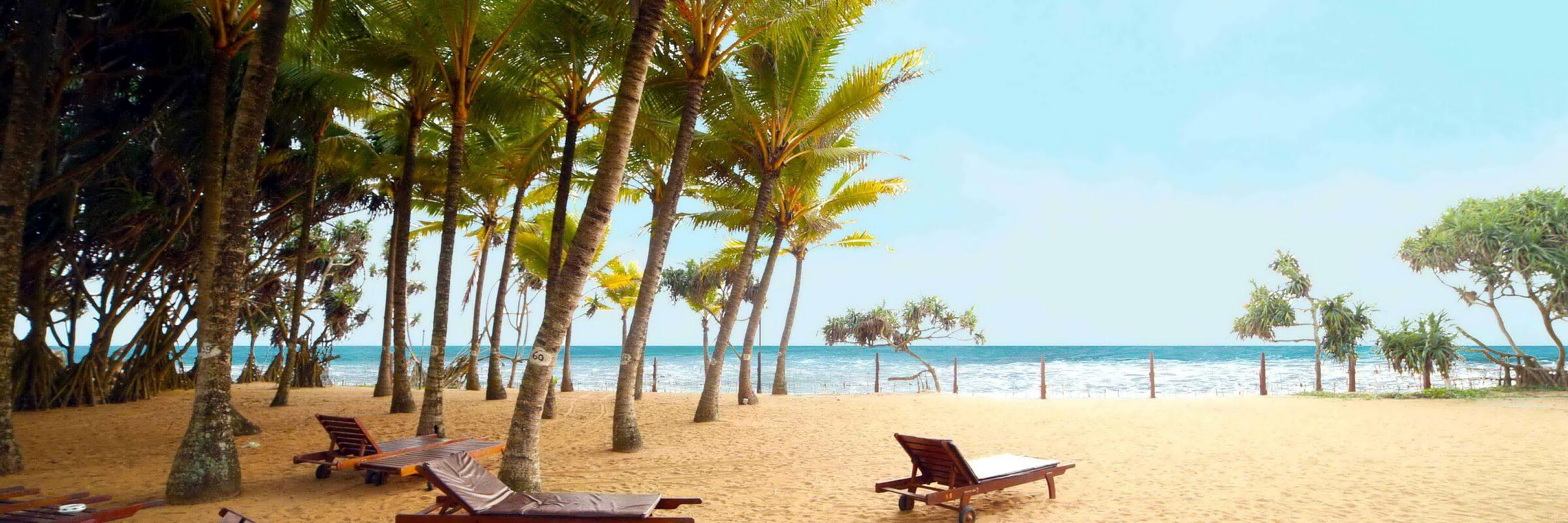 Der weitläufige Strand am Siddhalepa Ayurveda Health Resort Sri Lanka läd zum Entspannen ein