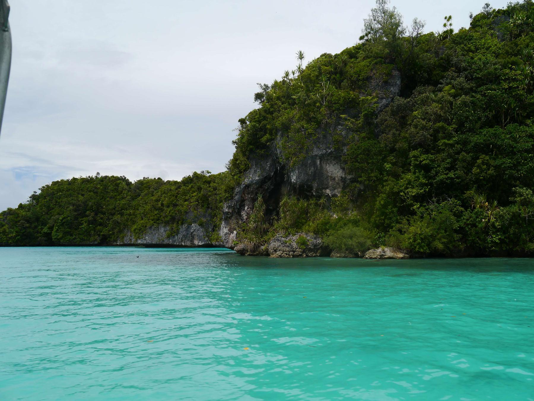 Das kristallklare, türkisfarbene Wasser im Inselparadies Palau eignet sich perfekt zum Tauchen.