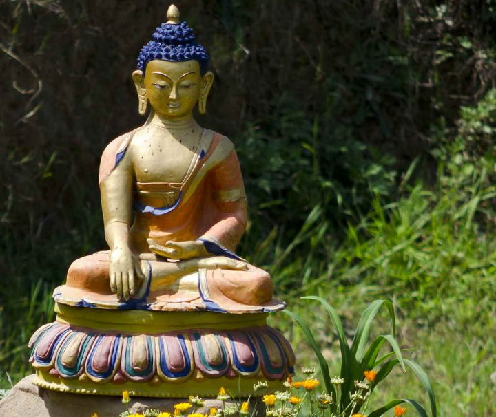 Buddha statue in field on Nepali biodynamic/organic farm,Kevin Rohan Memorial Eco Foundation (KRMEF),Kahare, Chalnakhel, Dakshinkali, Kathmandu Valley, NepalKRMEF is a Nepali NGO aiming to create a healthy, sustainable environment that embodies eco-friendly practices for the wellbeing of local communities throughout Nepal and beyond(www.krmef.org)