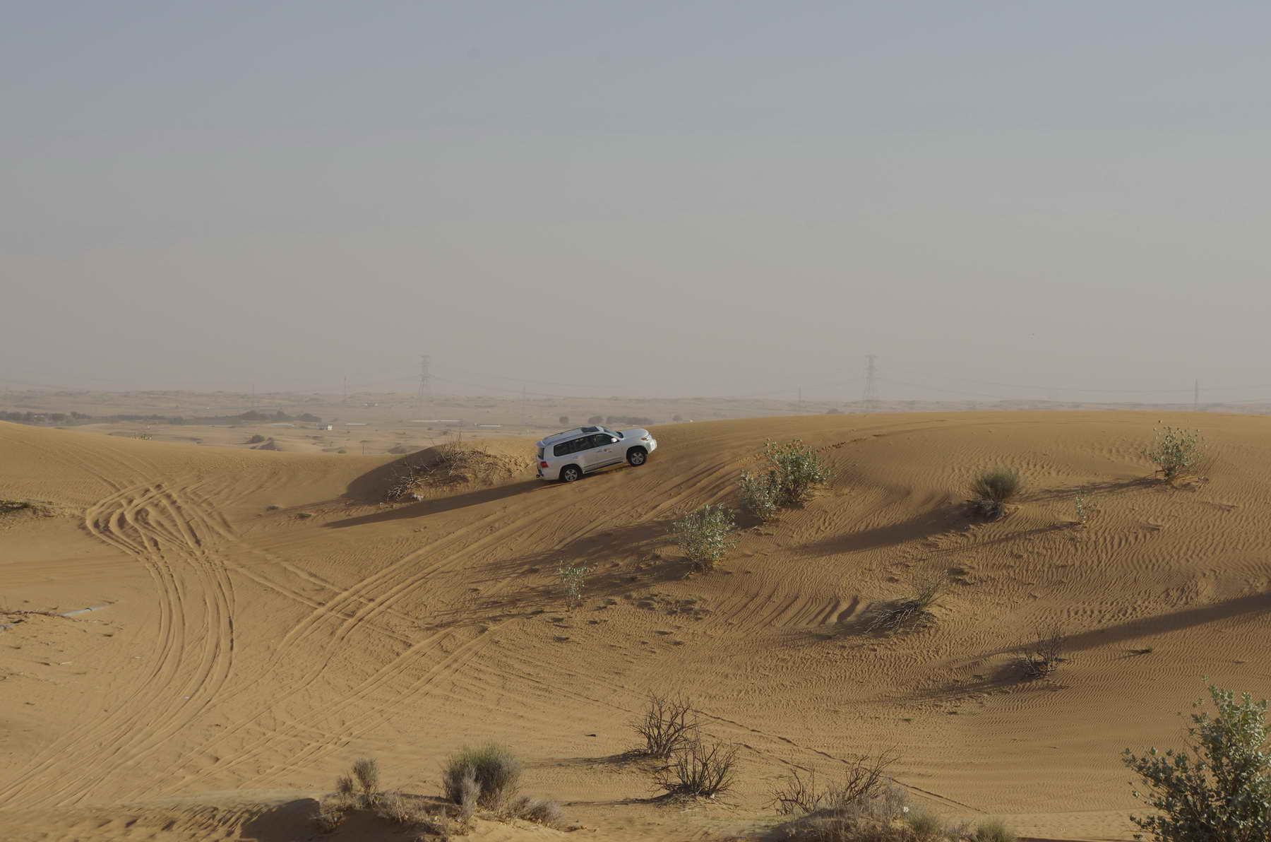 Wüstensafari in den Vereinigten Arabischen Emiraten