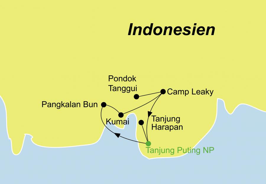 Die Tanjung Puting Nationalpark Rundreise führt Sie zu den Orang Utans auf Kalimantan