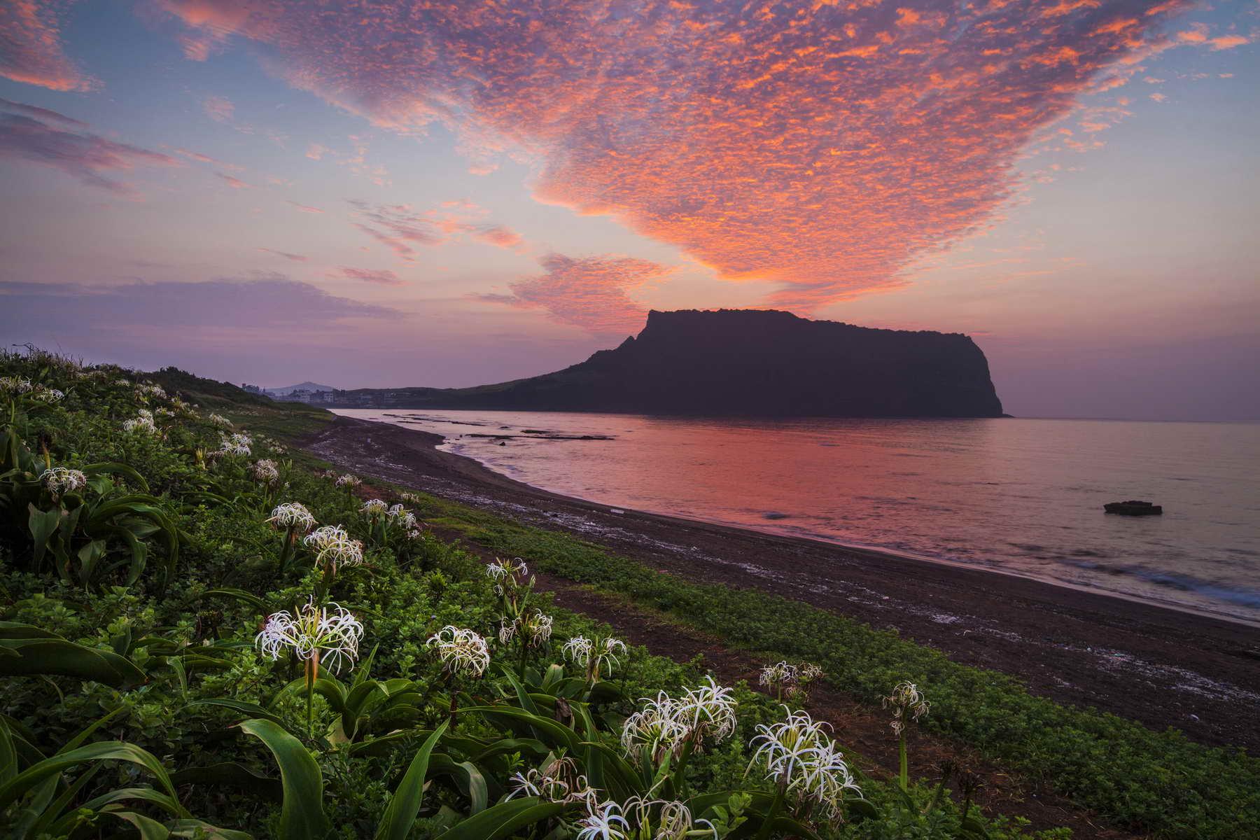 Idealer Abschluss Ihres Korea Urlaubs -Baden auf der Insel Jeju