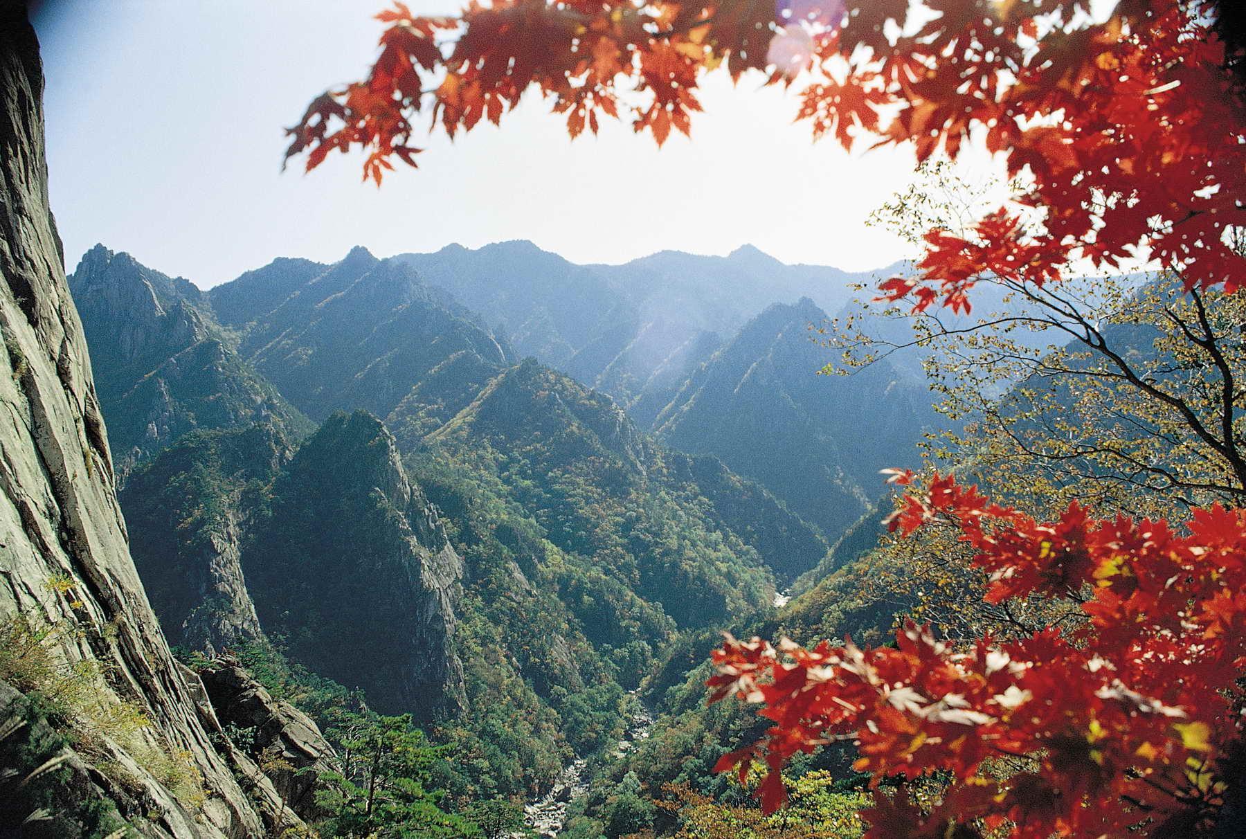 Der Seoraksan ist vor allem für seine zerklüftete Felslandschaft bekannt. Mit einer Höhe von 1708m ist er dritthöchste Berg in Südkorea.