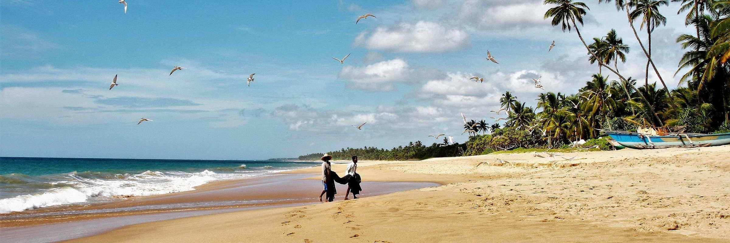 Badeurlaub auf Sri Lanka genießen
