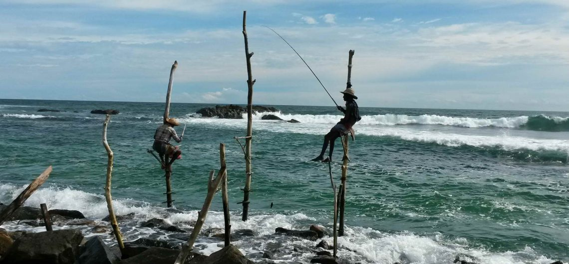 Sri Lanka Urlaub: Eins der bekannstesten Bilder von Sri Lankas Küste - die Stelzenfischer.