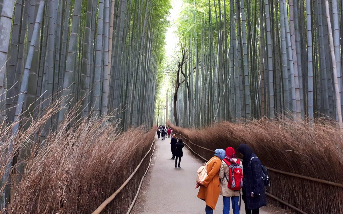 Arashiyama ist eine national ausgewiesene historische Stätte und bekannt für seine landschaftliche Schönheit.